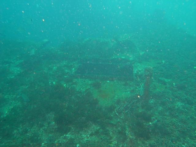 31deb7c23c794 Gallery    NC Wreck Diving    M0010119 002